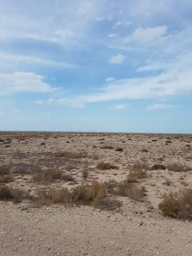 Nothing but desert